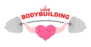 I love bodybuilding. A symbol of a strong heart with big muscles Royalty Free Stock Photo