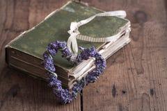I love Books Stock Image