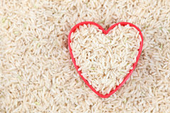 I love brown rice Royalty Free Stock Photography