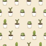 I love cacti  illustration. Cactus  background Royalty Free Stock Photos