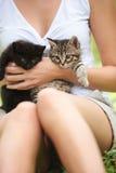 I love cats! Stock Image