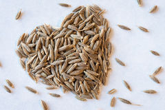 I love cumin seeds Royalty Free Stock Photo