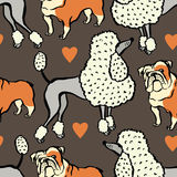 I love dogs Design with bulldog and Poodle Royalty Free Stock Photo