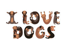 I love dogs. Vector letters of dachshund dogs. Stock Images