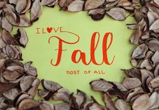 I Love Fall most of all Stock Photos
