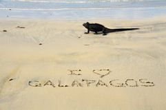 I Love Galapagos. Useful for travel agencies or travel industry. Words in sand written by hand. Expressions on sand at the beach. Vacation concept background Stock Image