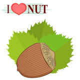 I love hazelnut. The picture of food and labels heart Stock Image