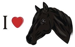I love horse. Head of horse with letter i and red heart vector illustration