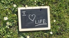 I Love Life Stock Photography
