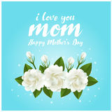 I love mom mother day text and jasmine flower on blue background vector design Royalty Free Stock Photography