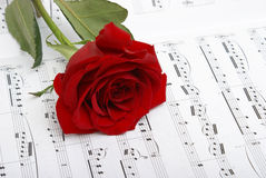 I Love Music. A red rose compliments the notes of music Stock Photo