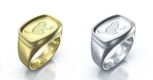I love my cat pair of rings. Pair of silver and golden rings with inscription i love my cat Stock Image