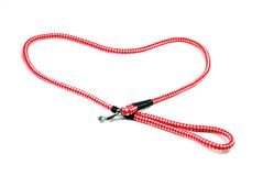 I Love My Dog. Red pet leash iseolated on white background Stock Images