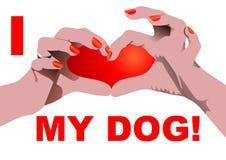 I love my dog Stock Photography