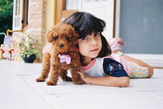 I love my little dog. Girl holds her little dog, so cute that it looks like a toy Stock Images