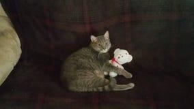 I love my teddy bear Royalty Free Stock Photography