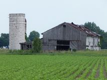 Old Abandon Barn in the Field. I love old abandon homes and barns. The trees has just taken over this house stock images
