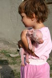 I love piglets. Stock Images