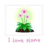 I love plant Stock Photography