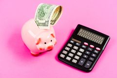 I love a smell of money. planning and counting budget. moneybox with calculator. Piggy bank. income capital management stock images