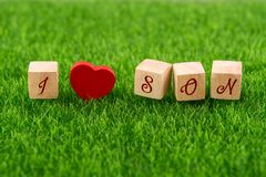 I love son. In wooden cube with heart shape on grass Stock Image