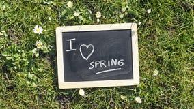 I Love Spring Royalty Free Stock Photo