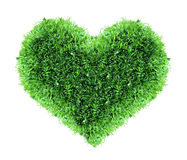 I love spring. Grass shape of heart royalty free stock image