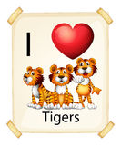 I love tigers Royalty Free Stock Images
