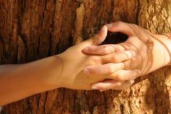 I Love Trees Royalty Free Stock Photos
