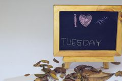 I love Tuesday written on a chalkboard. Autumn seasonal flat lay photo on White background Royalty Free Stock Photography