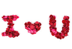 I love u on white background Royalty Free Stock Photo