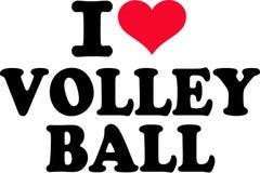 I love Volleyball Stock Photos