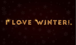 I love winter!. Royalty Free Stock Images
