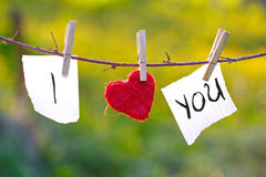 I Love You. Love message in the clothesline Royalty Free Stock Photo