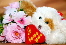 I love you. Toy dog with heart i love you Stock Photos
