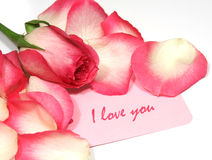I love you. Note with roses Royalty Free Stock Image