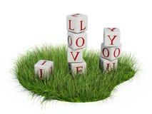 I love you. Isolated on white Stock Image