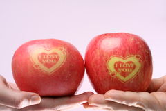 I love you apples. Two I love you apples on a pink background Royalty Free Stock Image