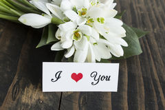 I Love You Card with Bouquet of Snowdrops Stock Photos
