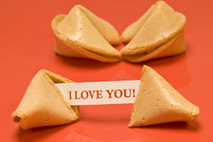 I Love You Fortune Cookie. A fortune cookie proclaims someone's love for another Royalty Free Stock Photo