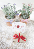 I love you gift Royalty Free Stock Images