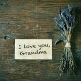I love you, grandma Royalty Free Stock Photo