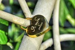 I love you. Locks on bridge Royalty Free Stock Photos