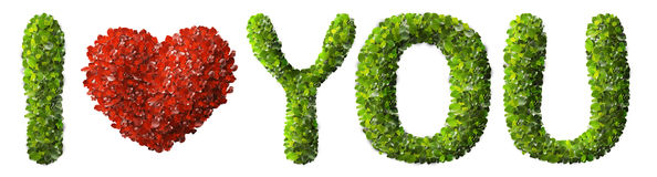I LOVE YOU made of green leaves  Royalty Free Stock Image