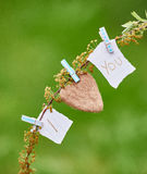 I love you message pegged to a branch in a field. Someone has pegged a message in a tree royalty free stock images