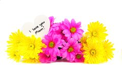 I love you Mom tag with flowers Royalty Free Stock Photos