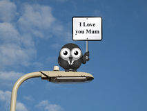 I love you Mum. Comical bird with I Love you Mum sign sat on a lamp post against a blue sky background Royalty Free Stock Photos