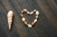 I love you, shell, heart shape, valentine day Royalty Free Stock Photography