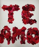 I love you in spanish, formed with red rose petals. Fresh and dried rose petals, background and texture, design for wedding or anniversary, te amo, message of Stock Photos