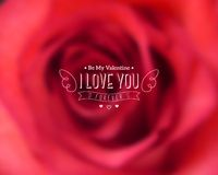 I Love You Text on Blurred Background with Rose Royalty Free Stock Photo